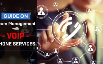 Guide on Team Management with VoIP Phone Services